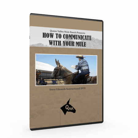 Communicate with Mules, Steve Edwards, Queen Valley Mule Ranch