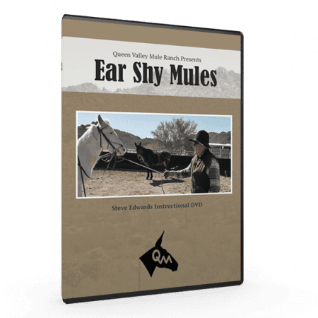 Instructional DVDs for Ear Shy Mule