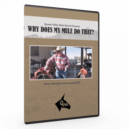 Steve Edwards, Mule Trainer, Why Does My Mule Do That?