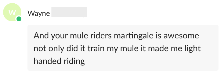 Your mule rider's martingale is awesome. Not only did it train my mule it made me light handed riding