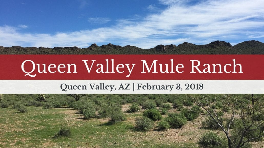 February 3, 2018 Training Clinic at Queen Valley Mule Ranch