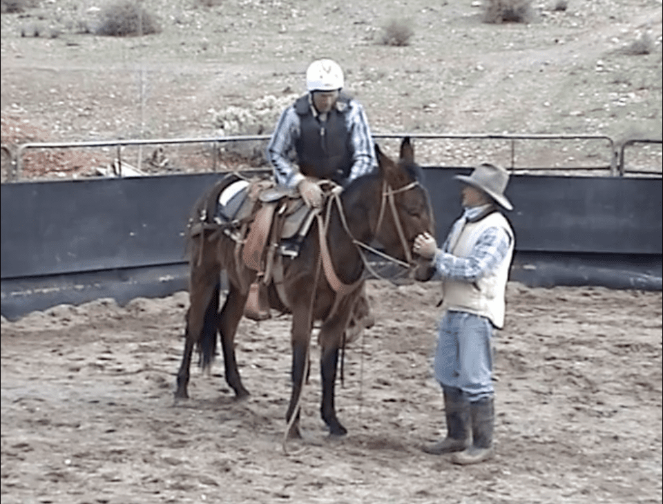 Steve Edwards training how to mount the mule correctly
