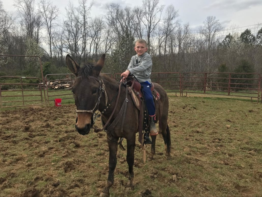 Scott's Son Spencer riding Bunny the new mule