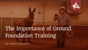 The Importance of Ground Foundation Training