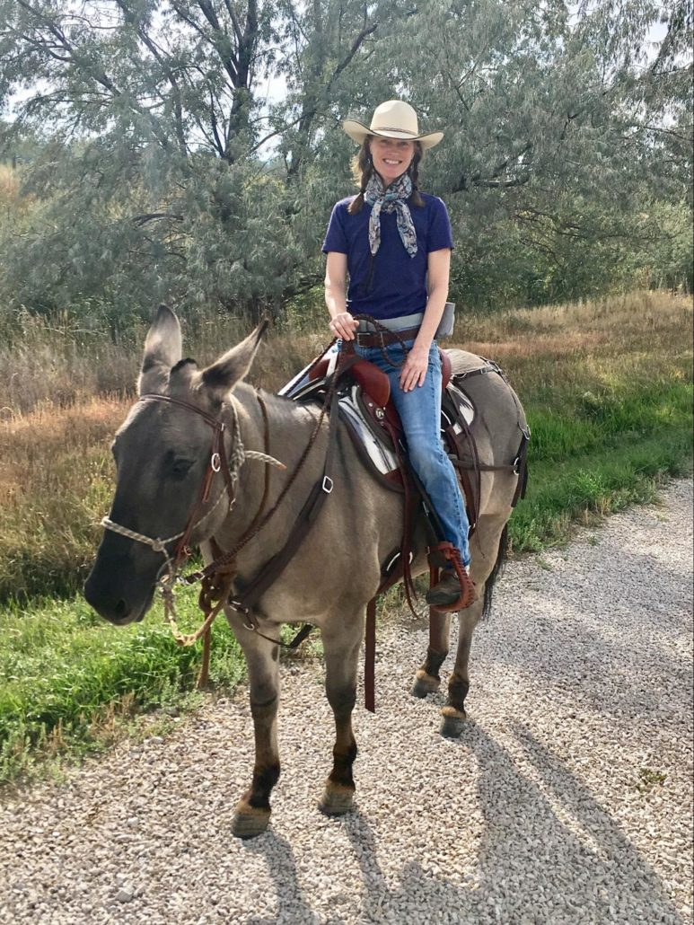 Cindy Sealy with mule and downhill hip saddle pad